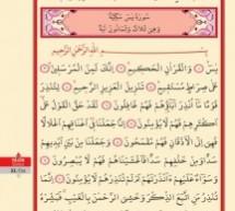 Resim Formatında Kur'an-ı Kerim Bilgisayar Hattı